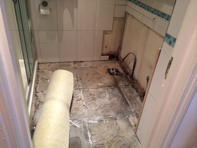Removed all the bathroom tiles to replace them
